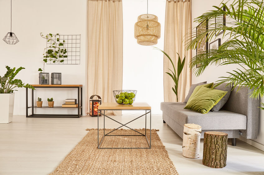 An organized warm interior design living room with a sofa, coffee table, bookshelf, and many house plants