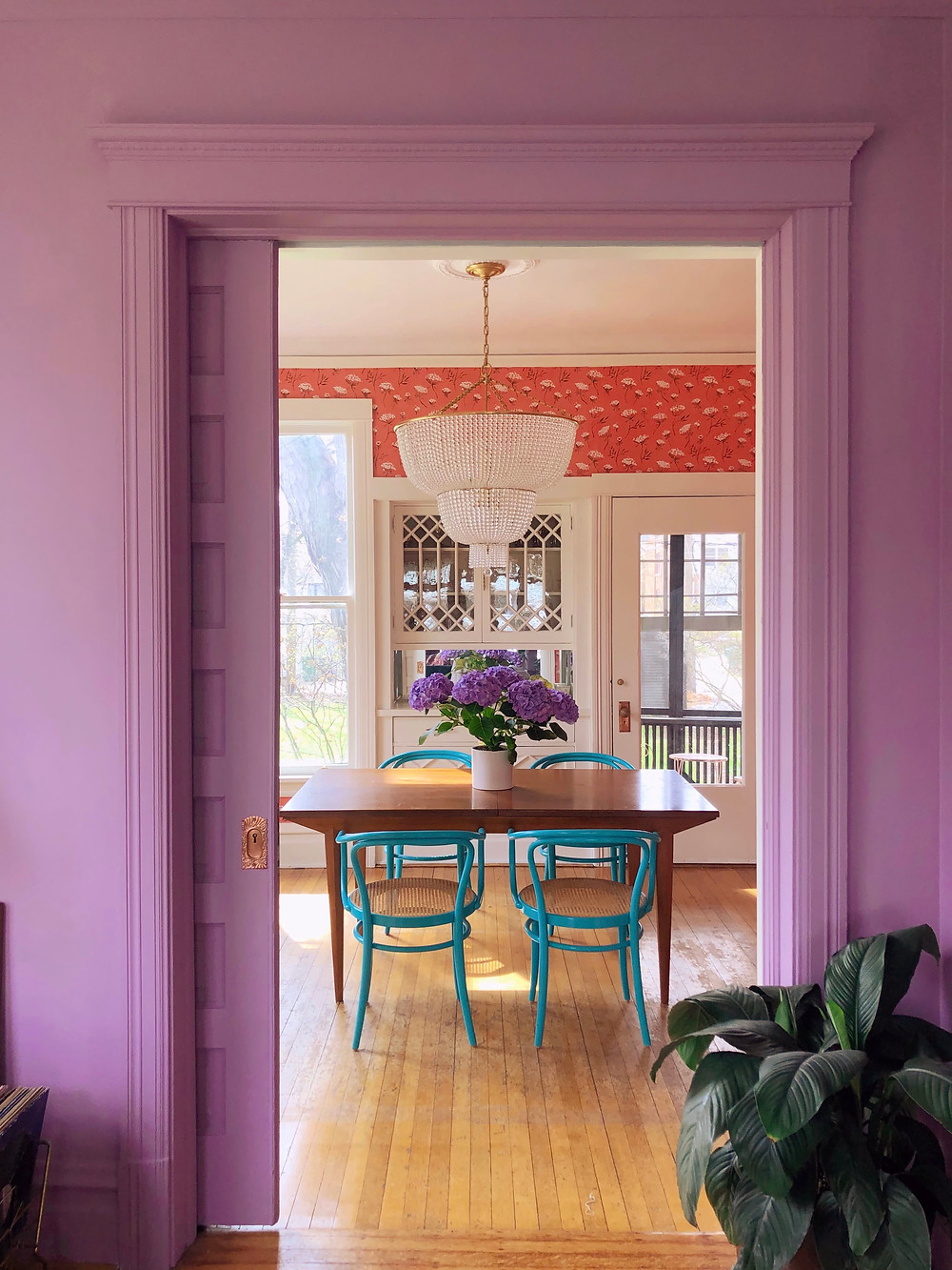 beautiful dining room with purple walls, blue chairs and wooden dining table