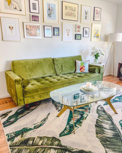 midcentury style living room with tropical rug and green sofa