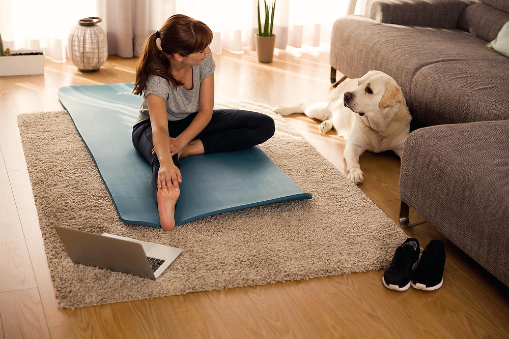 home gym workout with dog stretching
