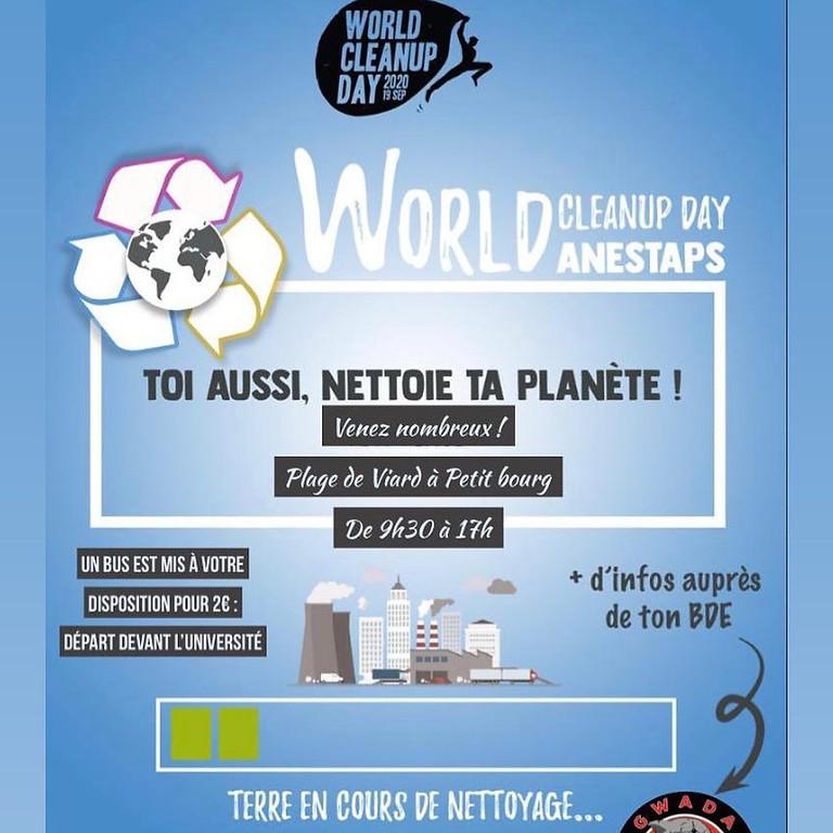 World CleanUp Day Gwada STAPS