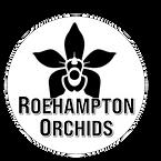 roehamptonorchids-BW-final.png