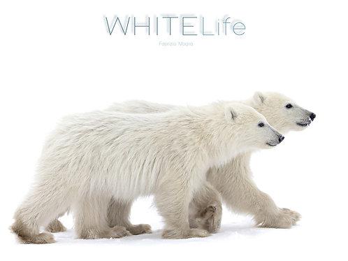 WHITELife by Naturecolors   Fabrizio Moglia & Giulia Moglia & Chiara Cecchinato