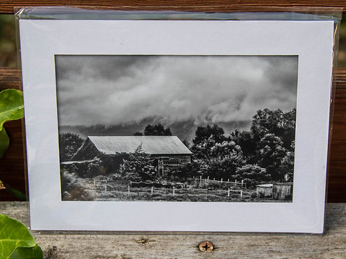 4x6 photograph matted to 5x7