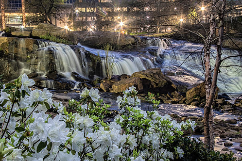 8x12 Canvas of Reedy River Falls SC