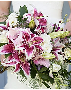 Patrick-Clancy-Photography-lily-flowers-
