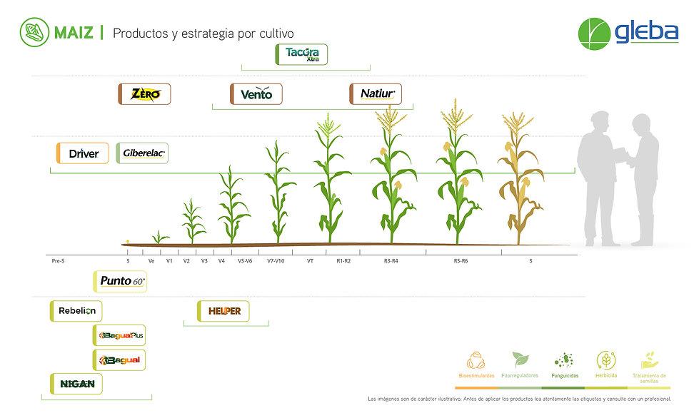 MAIZ - Estrategia x Cultivo 2020.jpg