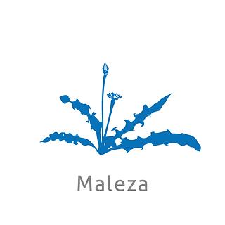 MALEZA.png