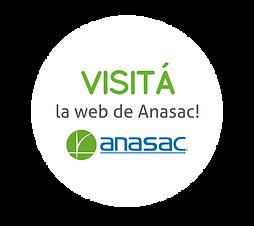 visita-anasac.png