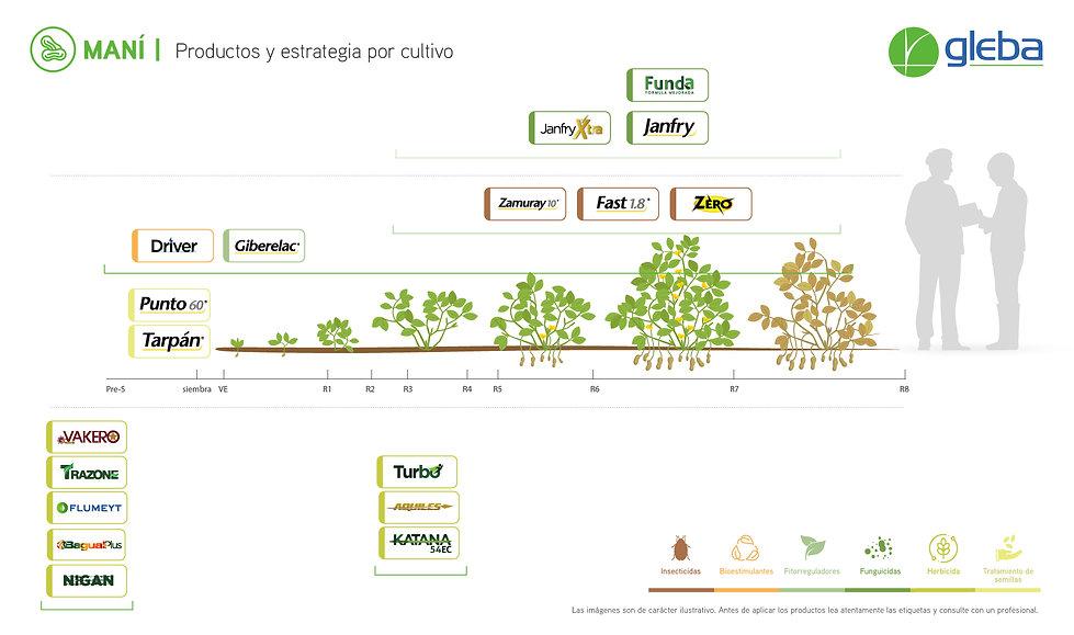 MANI - Estrategia x Cultivo 2020.jpg