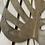 Thumbnail: Quadro Costela de Adāo