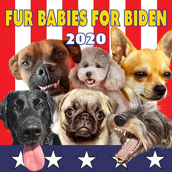 fur babies for biden.png