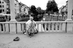 Slovenian Cello.jpg