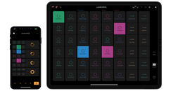 Launchpad Novation/Amplify iOS