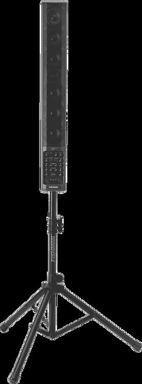 FISHMAN SA300x