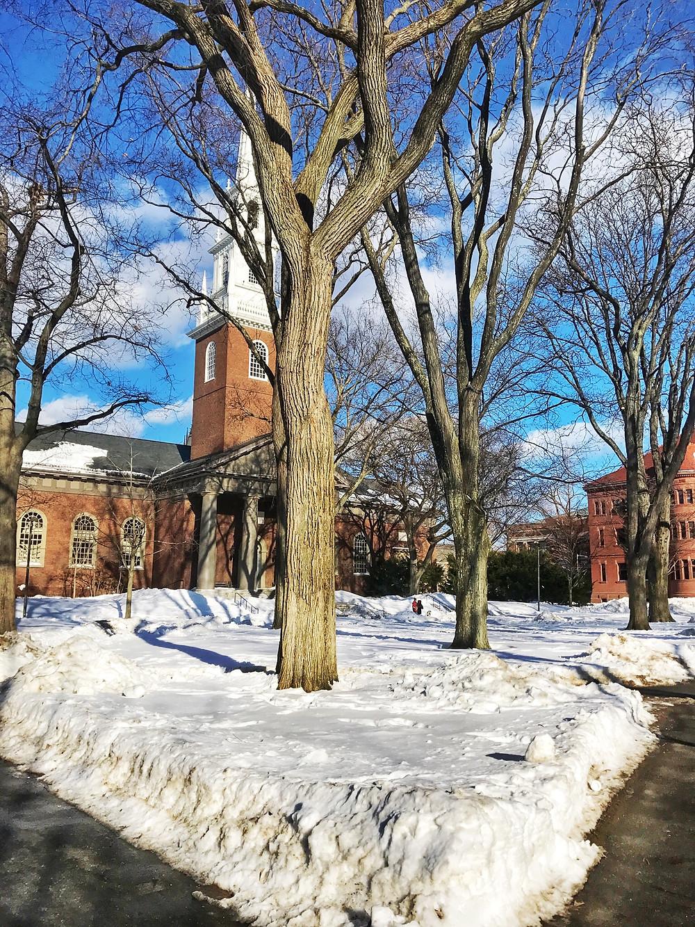 Harvard university, Cambridge, MA. Alien Thoughts international students blog