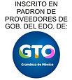 logo_Padron Gob Edo Gto_2.JPG