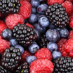 Fermented Berries, Fruits & Vegetables 50mg