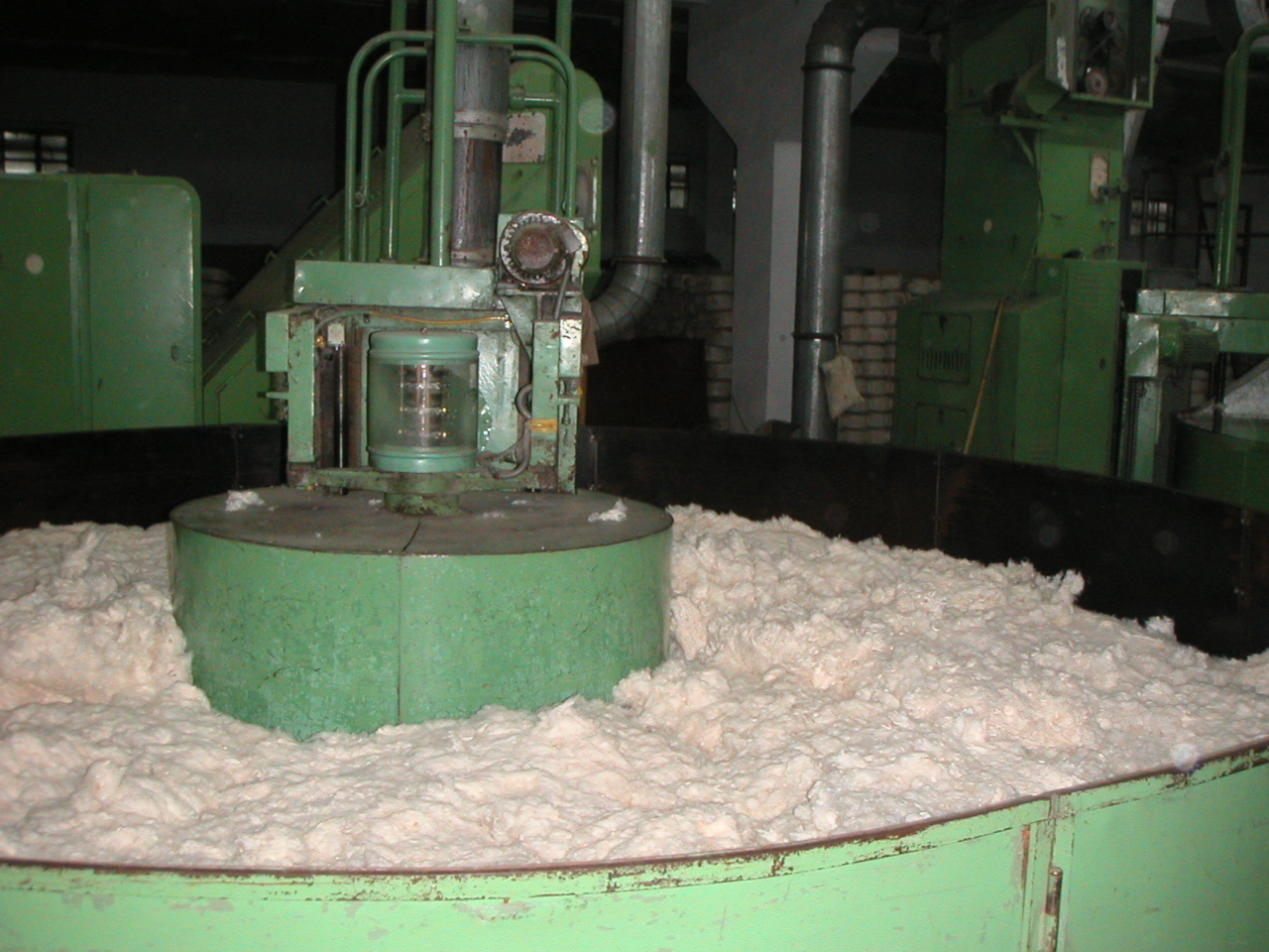 XinJiang Cotton Batch