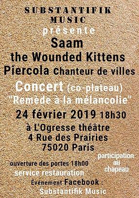 Saam concert ogresse théâtre chanson française