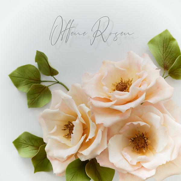 Offene Rosen.jpg