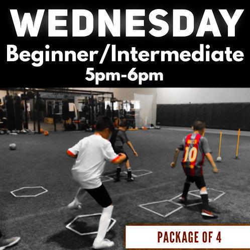 Wednesday - Beginner/Intermediate - 4pack