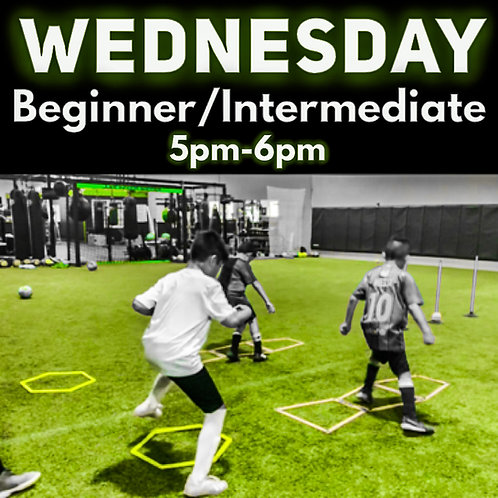 Wednesday - Beginner/Intermediate -1 session