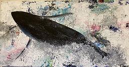 Orca II.jpeg