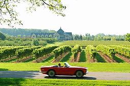 niagara-on-the-lake-wine-vineyards-canad