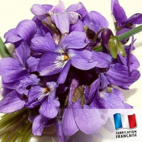 Bougie Violette des Bois