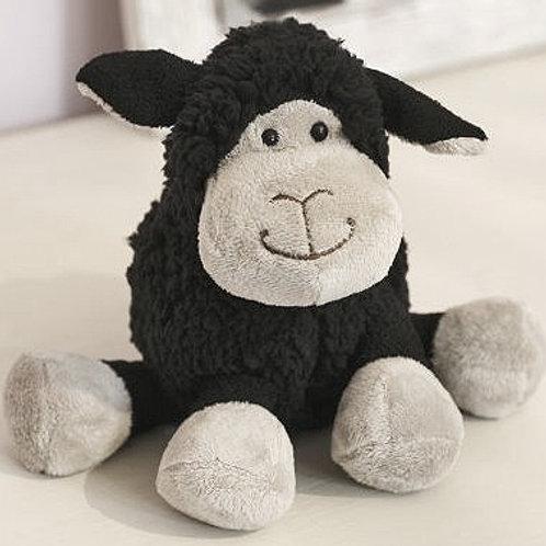 Baa Baa Black Sitting Sheep