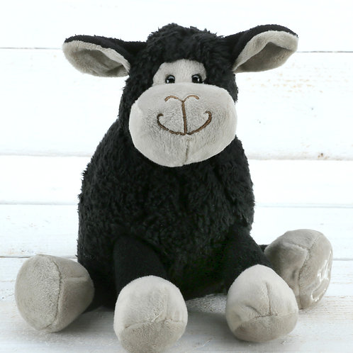 Small Black Sitting Sheep