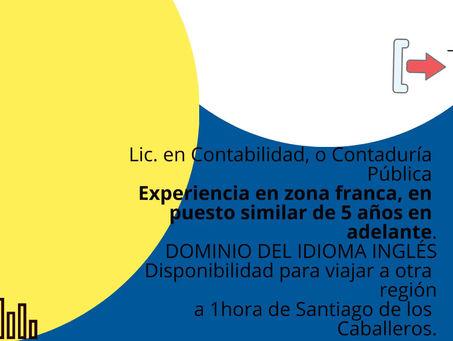 Gerente Financiero (Santiago)