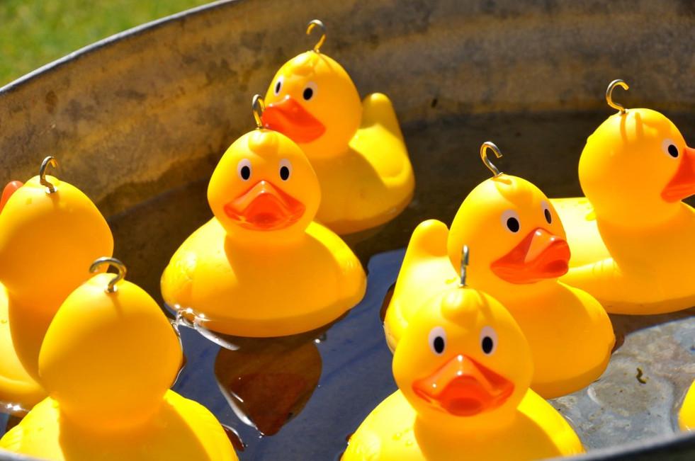 Hook A Duck.jpg