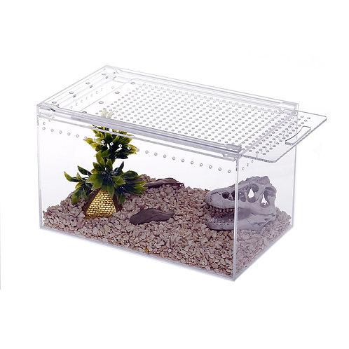 Acrylic Home Insect Vivarium