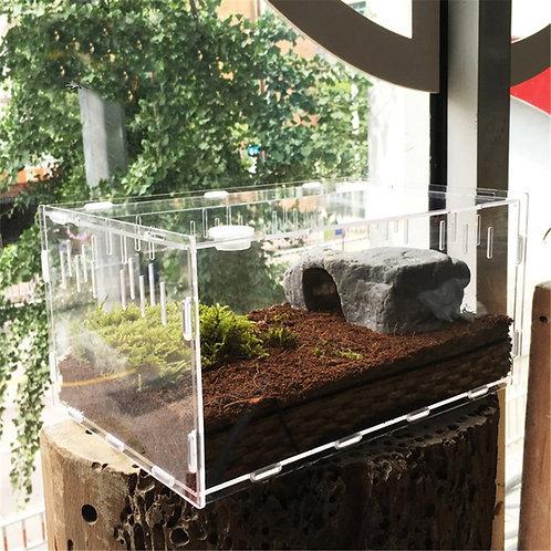 Acrylic Transparent Vivarium Invertebrate Terrarium
