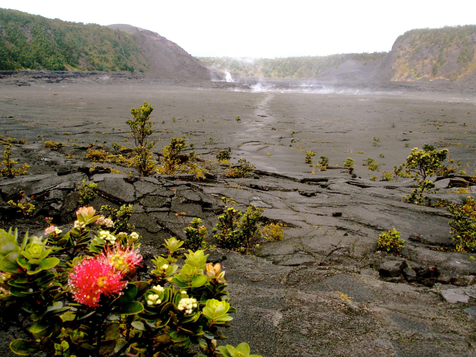 The Big Island, Hawaii (11).jpg