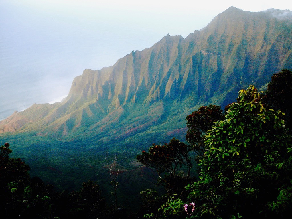 Kaua'i, Hawaii (3).jpg