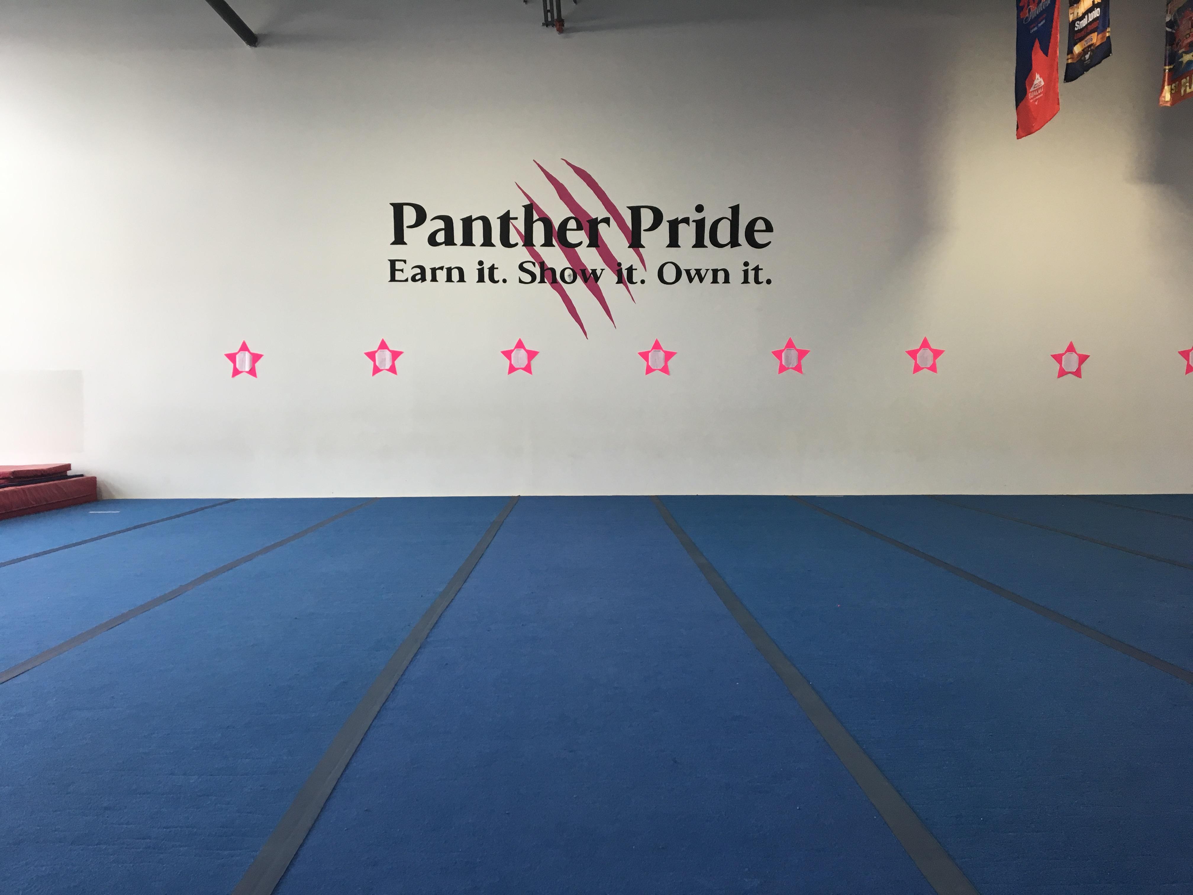 Panthers Cheer - Wall Logo