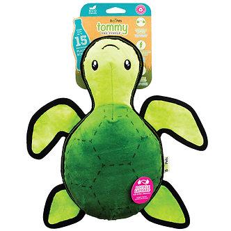 Schildpad Tommy