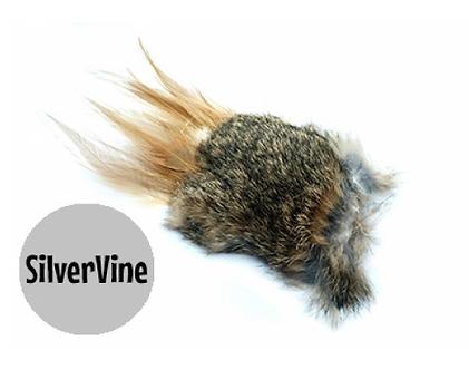 Purrs wild hare silvervine (matatabi)