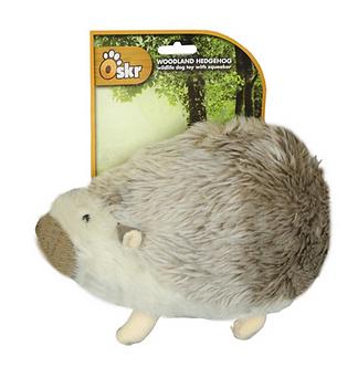 American wild hedgehog