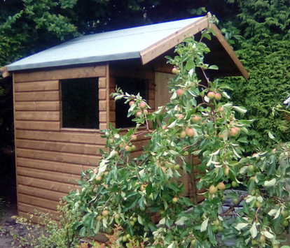 Topwood Sparrow T&G Shiplap Reverse Apex Shed
