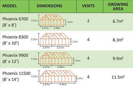 phoenix  measurements.jpg
