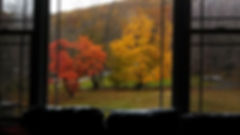 view out front window.jpg