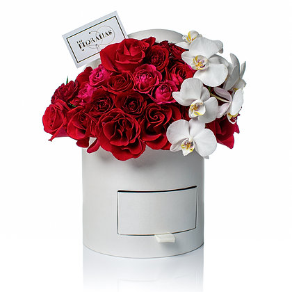 Jewerly Box Orchids