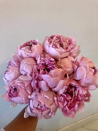 Bouquet 10 Peonias - Entrega exclusiva para el 8, 9 y 10 de Mayo