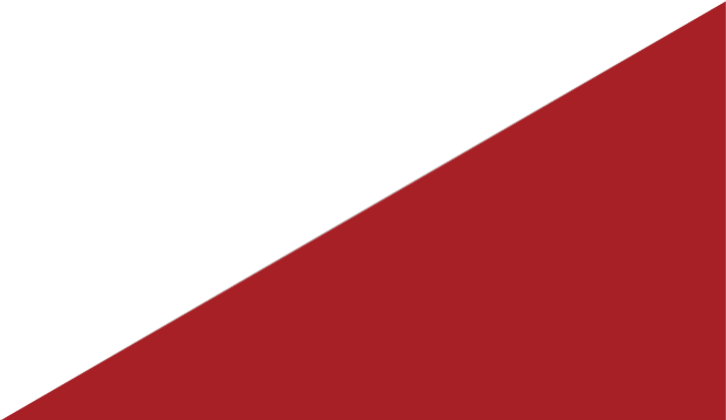 TAS Logo clear (just Triangle)_edited.pn