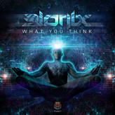 Bionix - What You Think ?