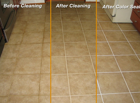 Should You SEAL Your Grout???